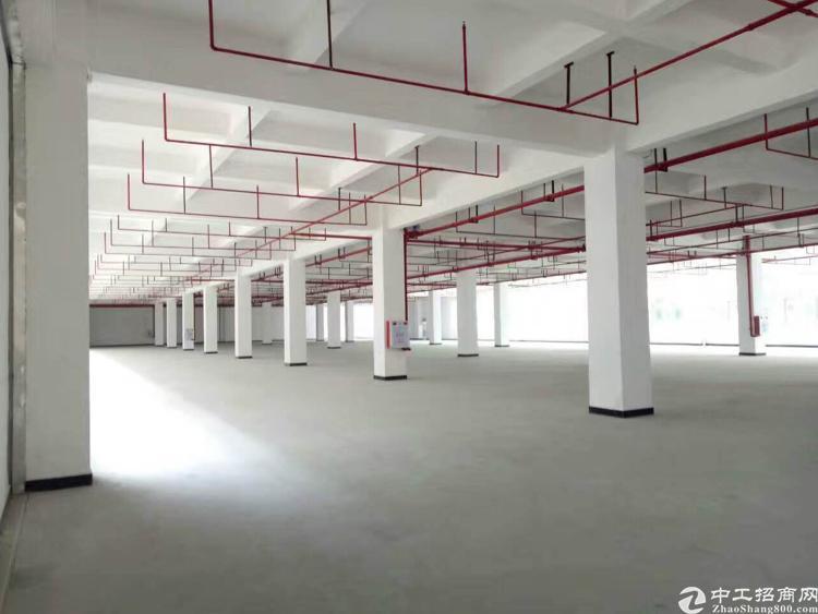 大朗新出标准独院厂房,大小可分租