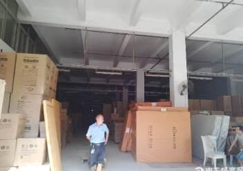 坪山物流仓库独栋厂房1-3层8000平图片6