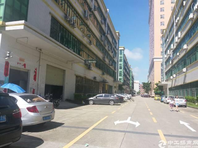 大浪颐丰华工业区精装修厂房,半层900平,加工,电商,仓库等-图8