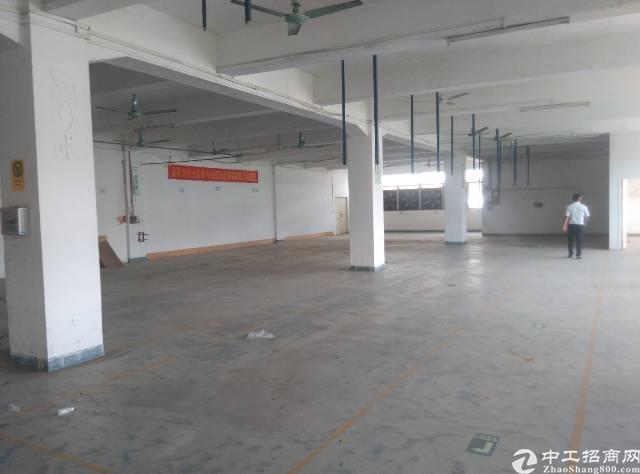 横岗一楼精装修厂房,现成办公室地坪漆消费喷淋,面积720-图2