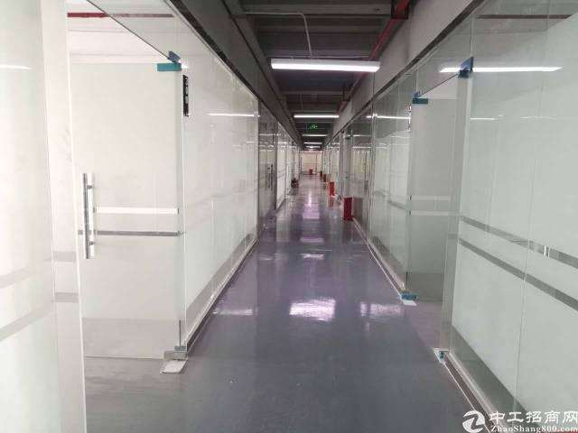 横岗九成新电商园860平办公室出租