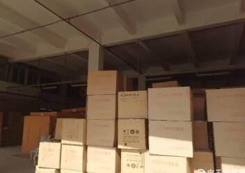 坪山物流仓库独栋厂房1-3层8000平图片7