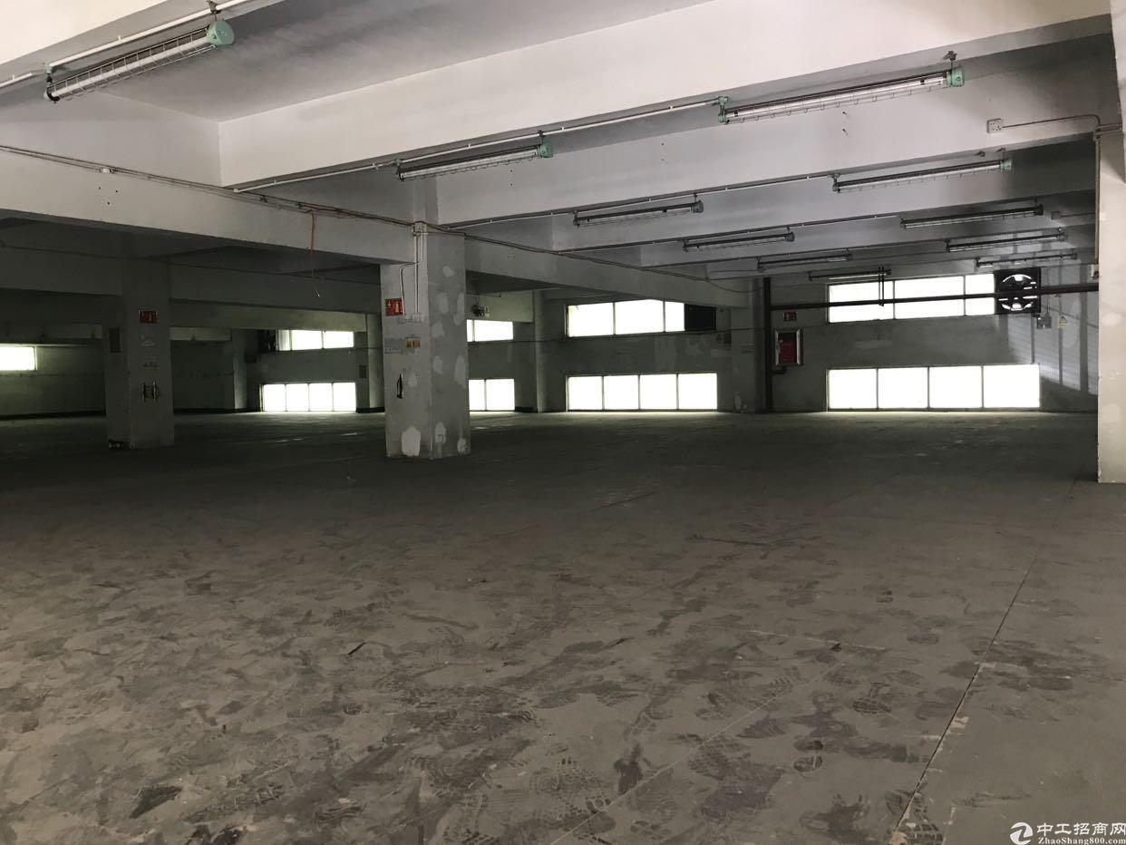 横岗街道大康社区2000平仓库招租,带有宿舍1000平出租-图2
