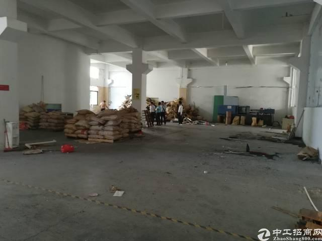 公明龙大高速楼村出口新出一楼2400平可分租-图5