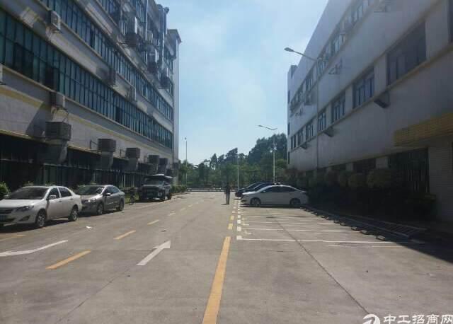 大浪颐丰华工业区精装修厂房,半层900平,加工,电商,仓库等