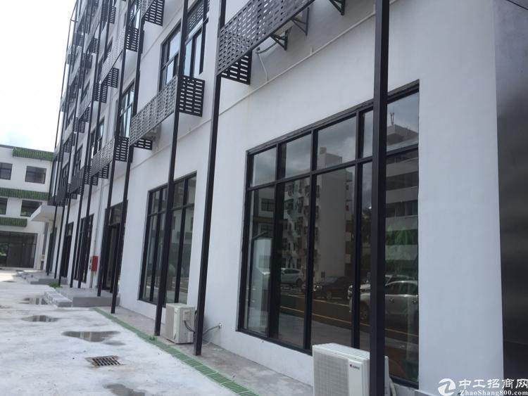 深圳,周边标准厂房,写字,仓库,大小都有-图4