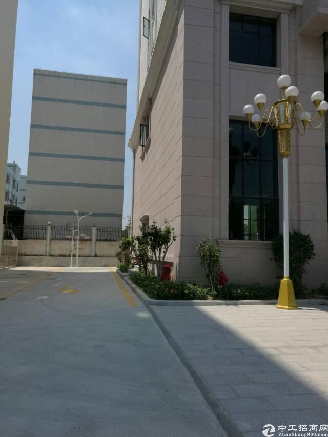 塘厦科苑城写字楼600平方米一层招租