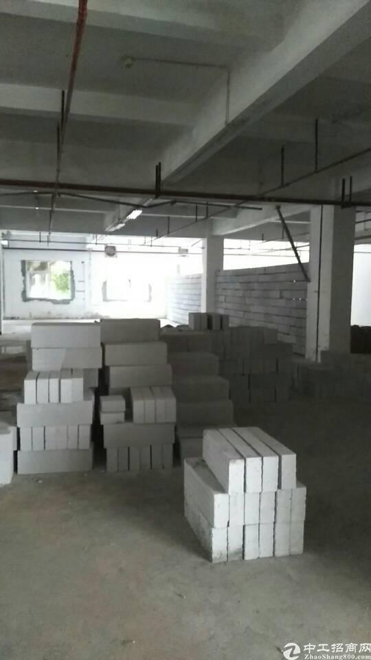 虎门龙眼附近新出一楼1200平带消防喷淋院子大适合做仓库-图2