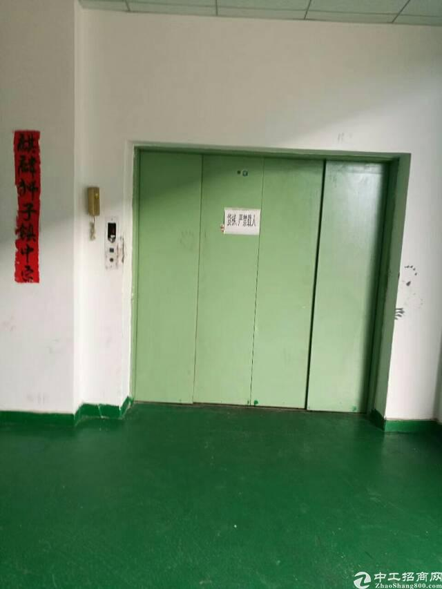 石碣新出村委厂房750㎡电400,现成办公室卫生间地坪漆