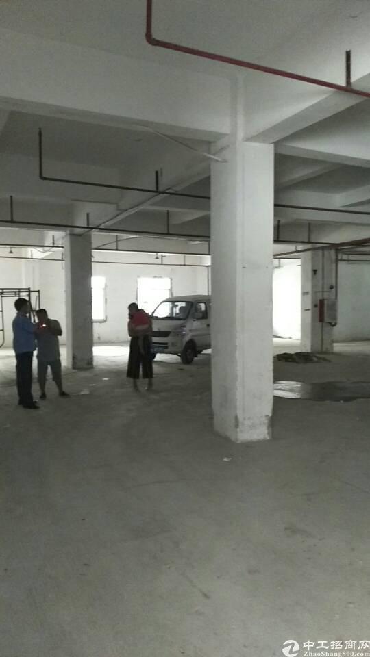 虎门龙眼附近新出一楼1200平带消防喷淋院子大适合做仓库