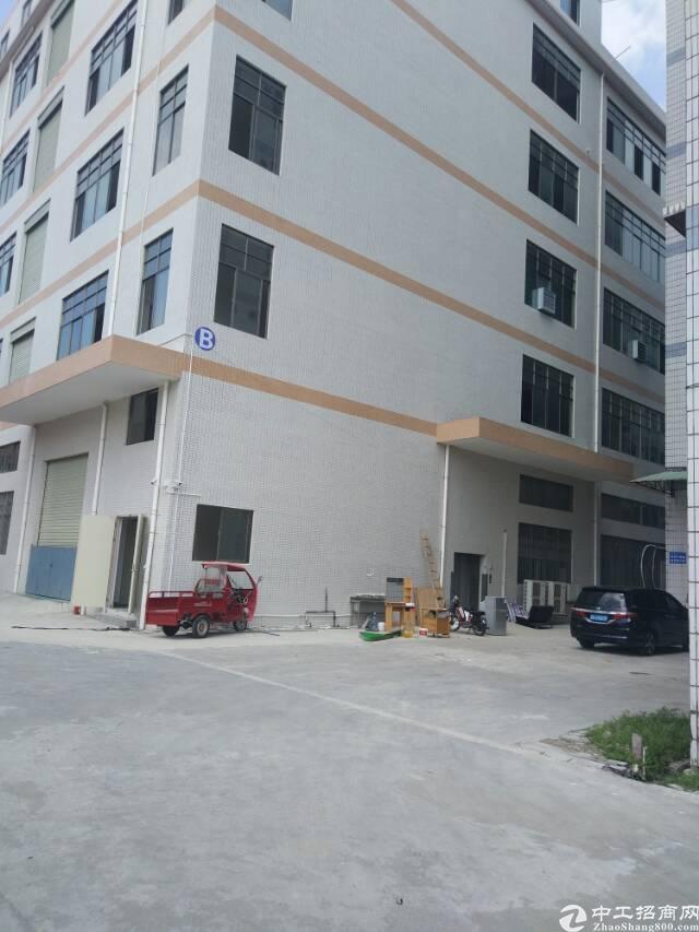 3800平新厂房招租