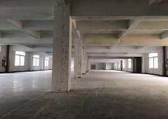宝安新安新出5楼6楼各2400平招租