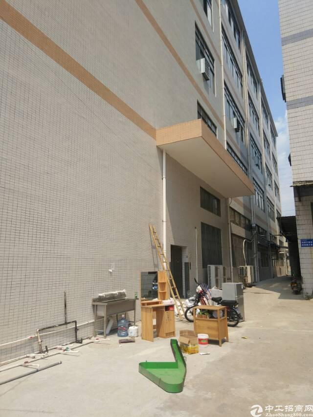 单层3800平三吨电梯两部新楼