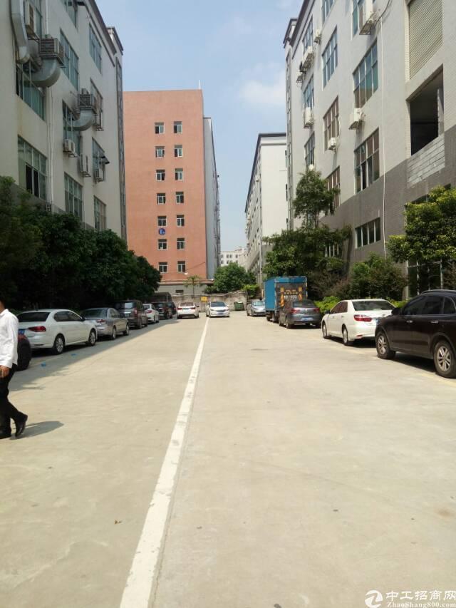 观澜原房东大型工业园区内新出一楼2000平,滴水5.5米