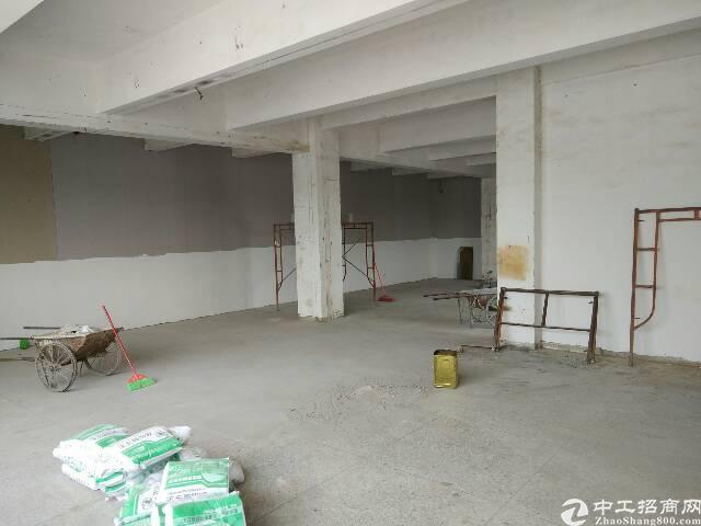 横岗原房东厂房仓库出租-图4