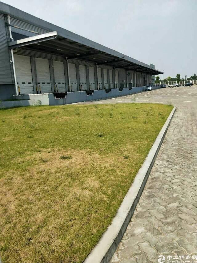 沙田保税区物流仓库招租,面积15600平米,消防喷淋,卸货平