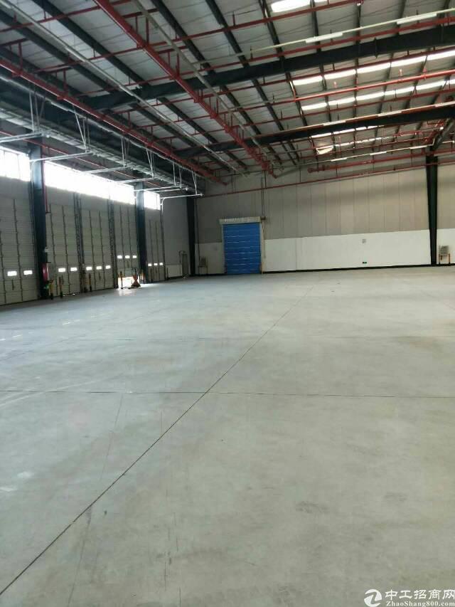 沙田保税区物流仓库招租,面积15600平米,消防喷淋,卸货平-图2