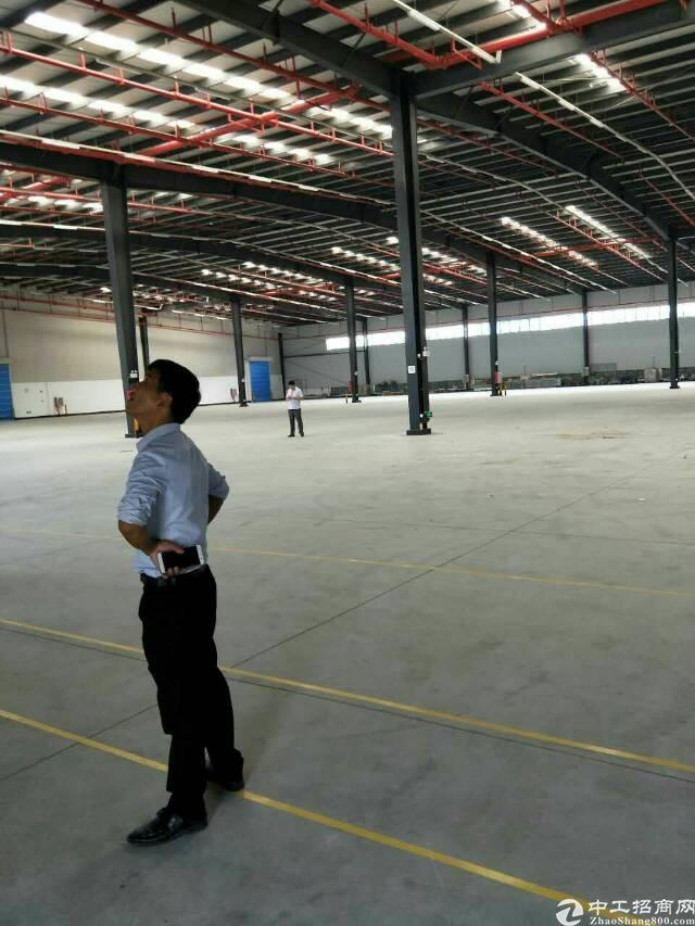 沙田保税区物流仓库招租,面积15600平米,消防喷淋,卸货平-图5
