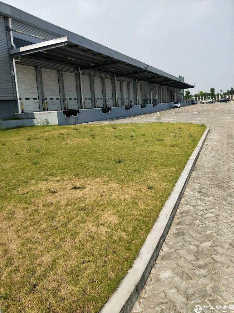 虎门白沙出租大型物流保税仓库面积约16000平方-图2