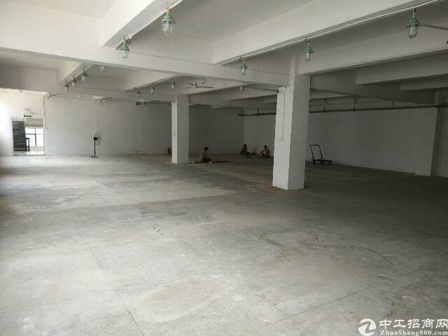 横岗原房东厂房仓库出租-图8