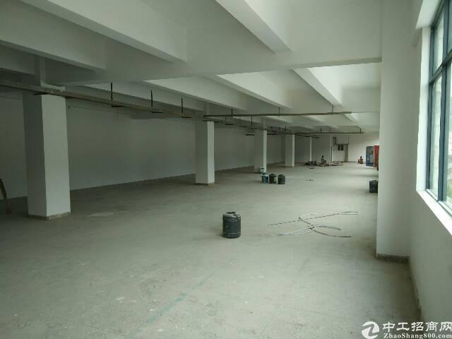 横岗原房东厂房仓库出租-图3