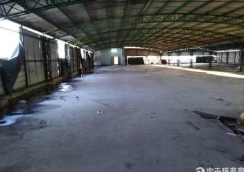 工业区带电梯顶楼仓库10元租图片1
