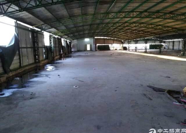 工业区带电梯顶楼仓库10元租