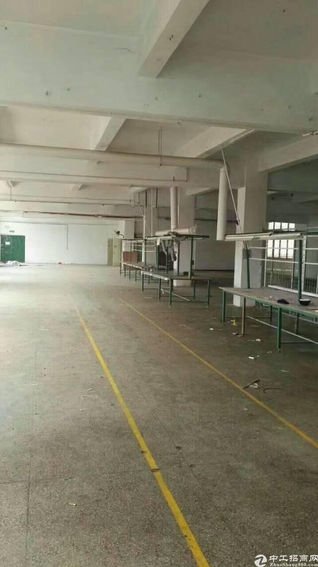 松岗东方工业区一整层1300平米带装修厂房出租-图3