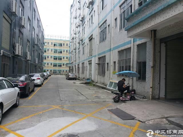 龙华富士康南门,大工业区,楼上300平带精装修,电商,仓库等-图3