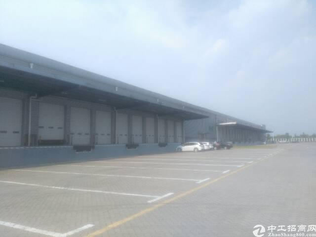 沙田12米高保税仓库出租面积13500平租25元带卸货平台