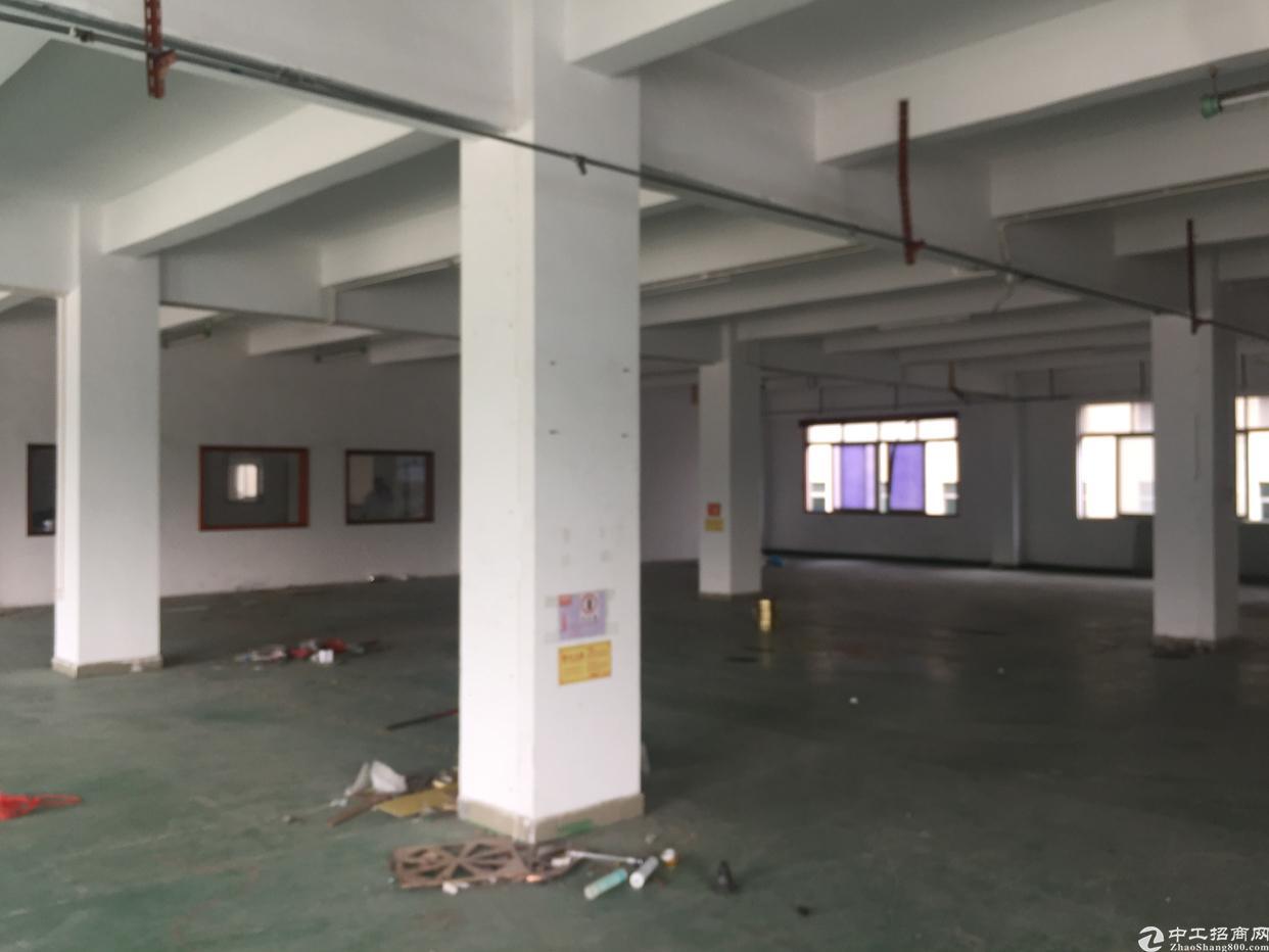 龙岗爱联厂房改造电商办公小仓库