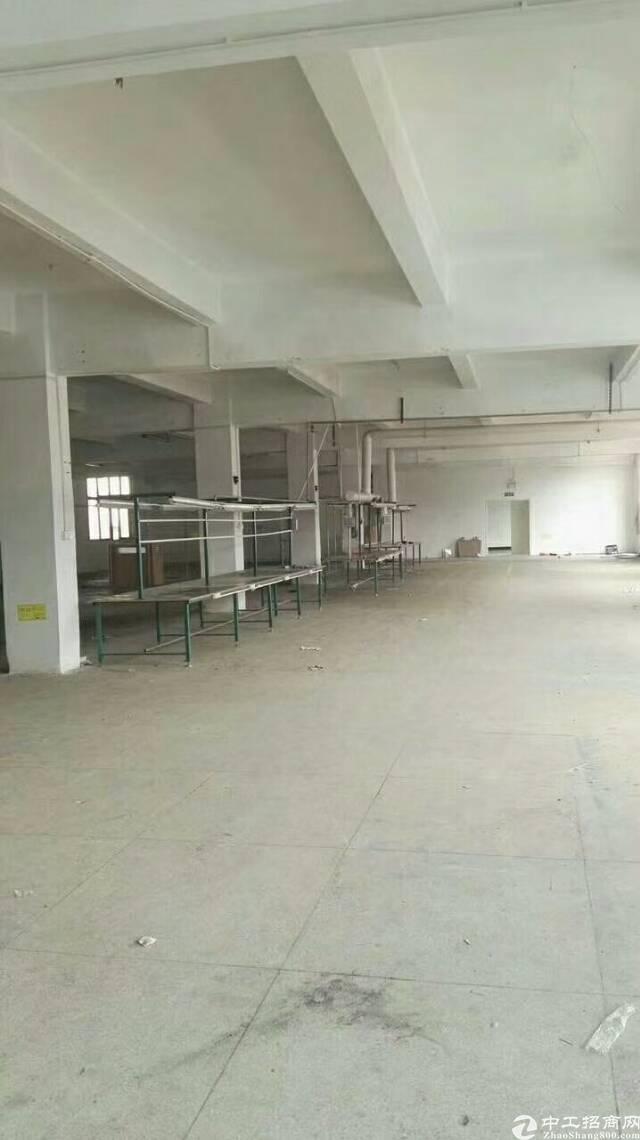 松岗东方工业区一整层1300平米带装修厂房出租-图4