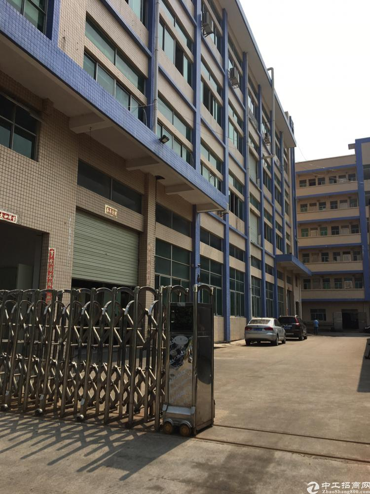 长安沙头新出楼上带办公室精装修厂房2300平方招租可大小分租