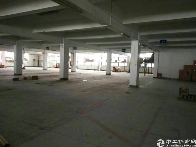 锦厦 可做仓库一楼2200平出租-图3