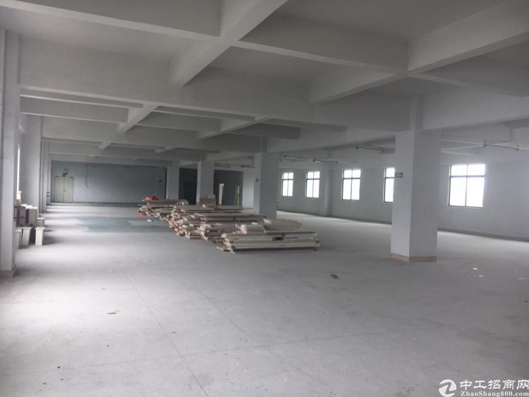 横岗六约社区地铁口旁2300平方标准厂房有两个电梯只做仓库-图2