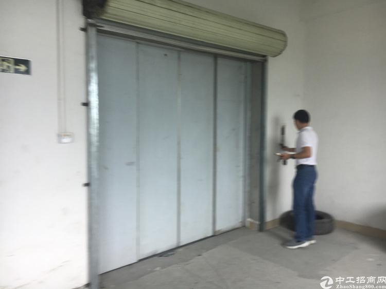 横岗六约社区地铁口旁2300平方标准厂房有两个电梯只做仓库-图4