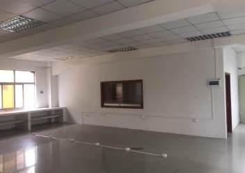 横岗2800平带卸货平台仓库招租图片2