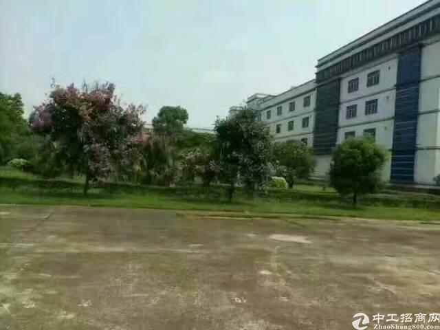 横岗地铁站附近电商仓库350平方米招租-图3