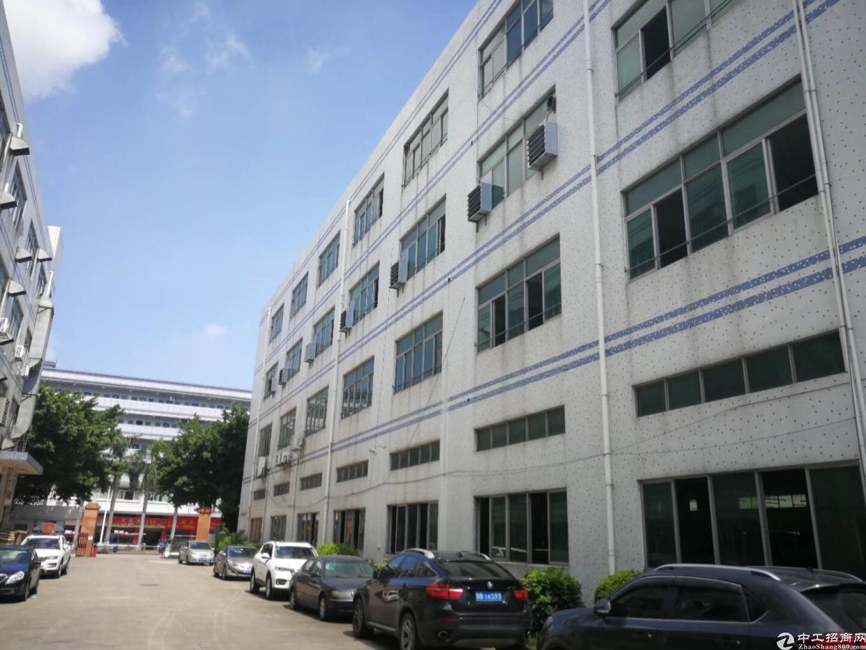宝安区一楼2000平方米仓库出租-图2