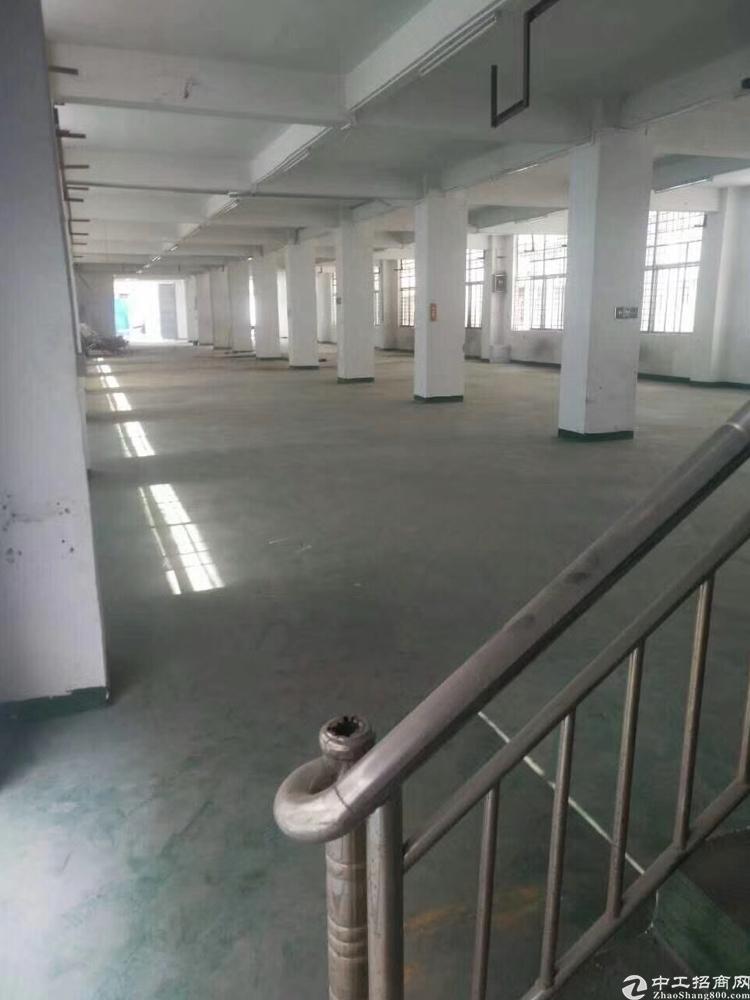 清平高速附近7000平方米物流仓库招租-图2