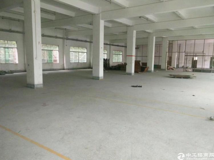 清平高速附近7000平方米物流仓库招租-图3