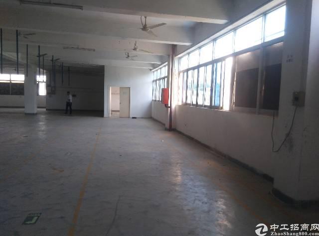 横岗一楼精装修厂房,现成办公室地坪漆消费喷淋,面积720-图3
