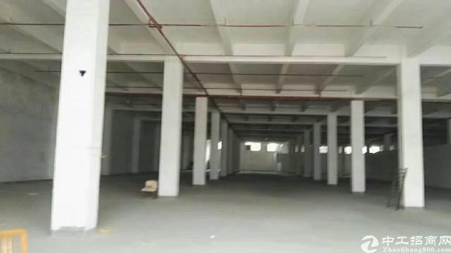物流仓库最近坑梓深汕路边7200平(可分租)-图4