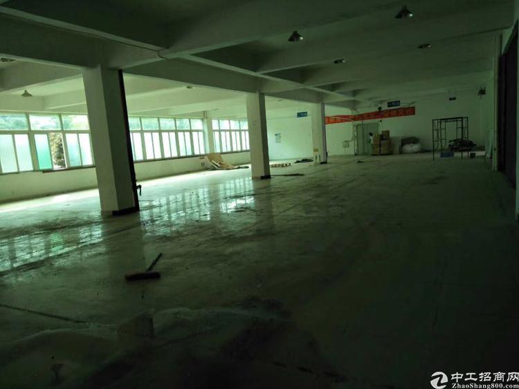 龙华大型科技园一楼1100平招租可分租