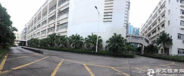 龙华清湖地铁站附近150平起大小面积分租