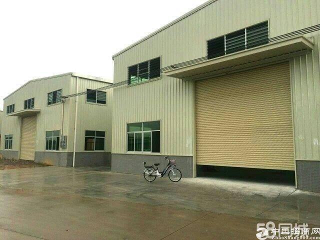 横沥镇原房东500㎡独院钢构厂房滴水8米高牛角