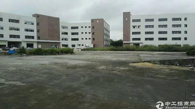 物流仓库最近坑梓深汕路边7200平(可分租)-图2