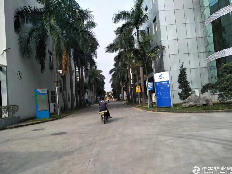 龙华大型科技园一楼1100平招租