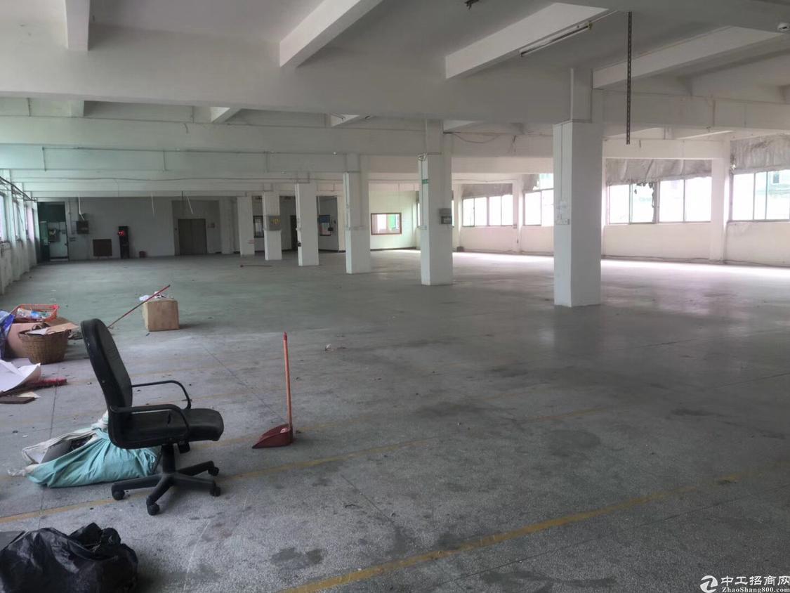 黄江高速路口独门独院标准厂房