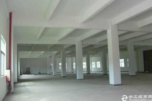 东莞茶山大小优质厂房我这里都有 欢迎来电-图5